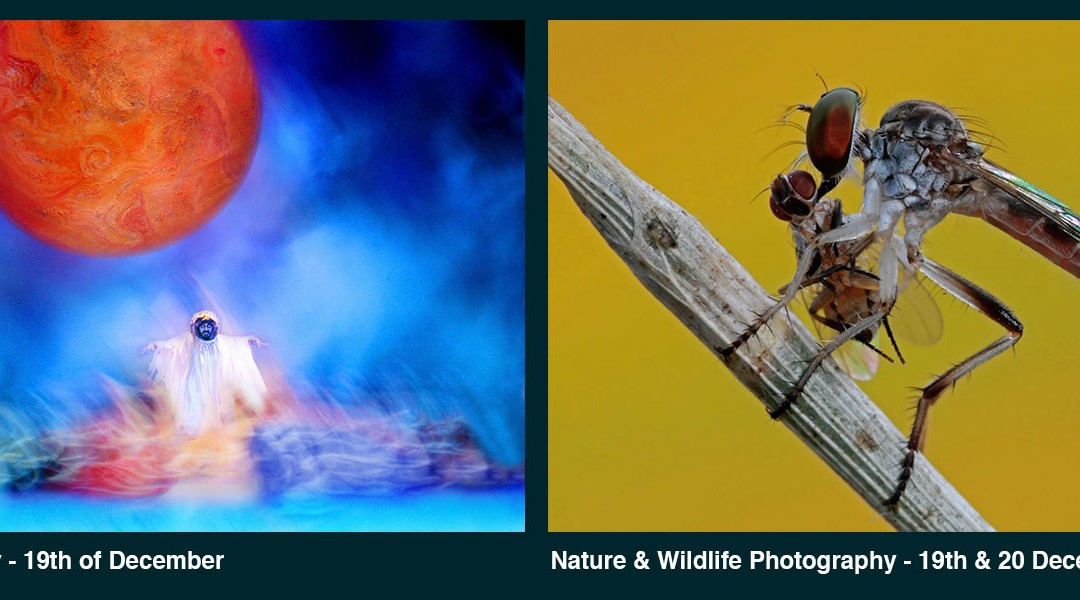 Fine Art and Nature & Wildlife Photography Workshops