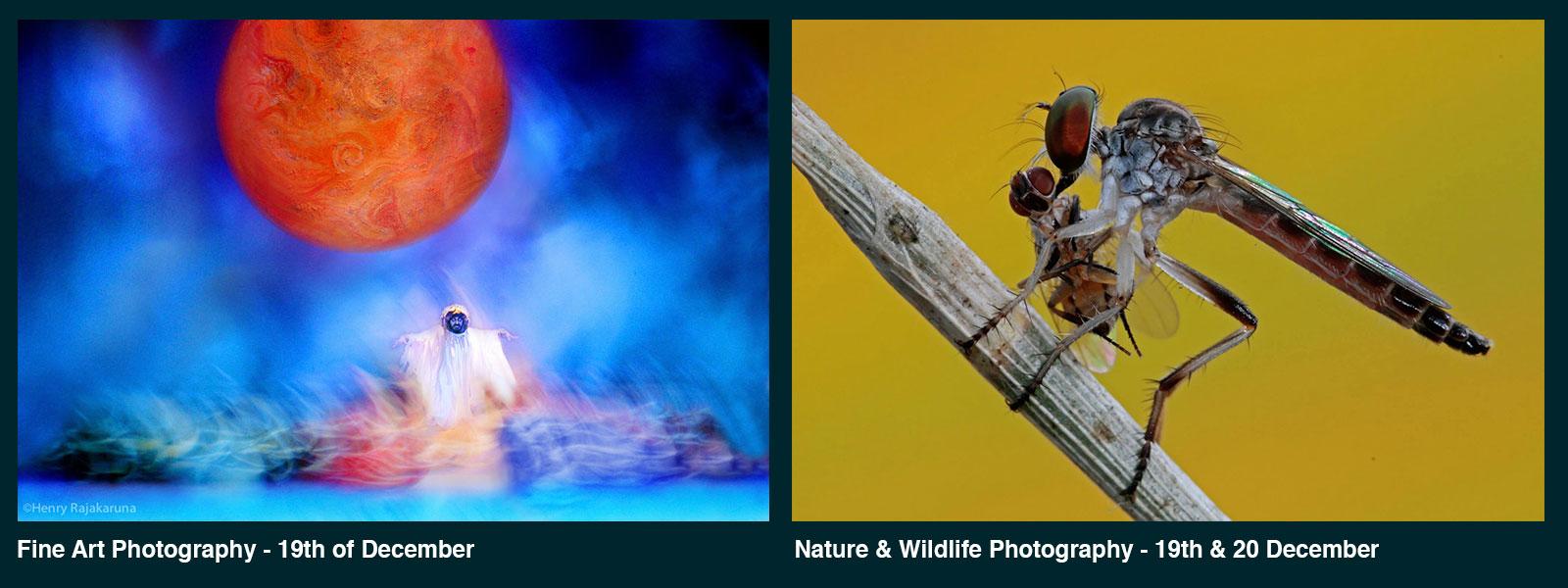 fine-art-nature-wildlife-workshop-IME